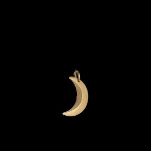 Half Moon Pendant